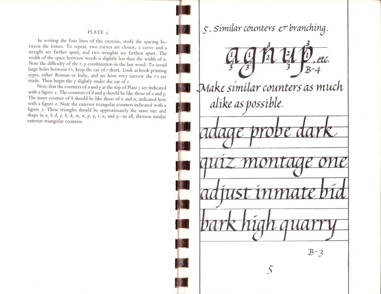 Italic Calligraphy and Handwriting